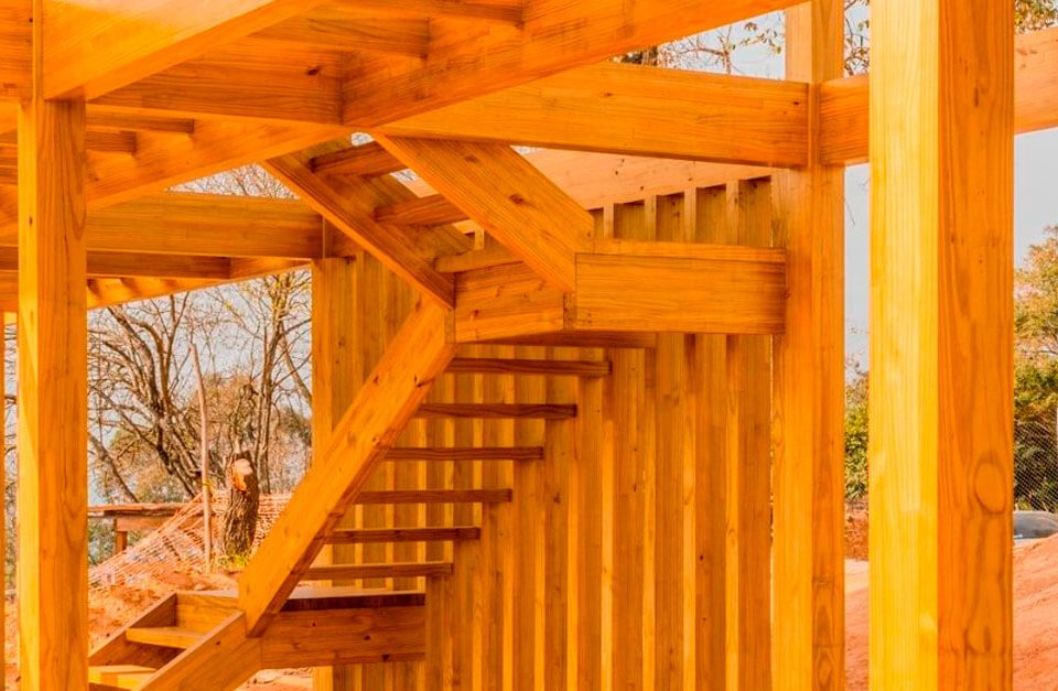 Diferenças entre as espécies de madeira engenheirada na construção civil: Pinus e Eucalipto.